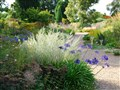 Beth Chatto & Marks Hall Gardens