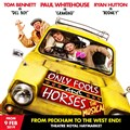 Only Fools And Horses The Musical - Matinee