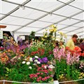 Southport Flower Show & Lancashire Coast