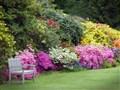 Stody Lodge Gardens & Cream Tea