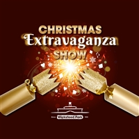 Wicksteed Park Christmas Extravaganza Show