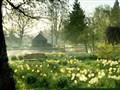Bury St Edmunds & Chippenham Park Gardens