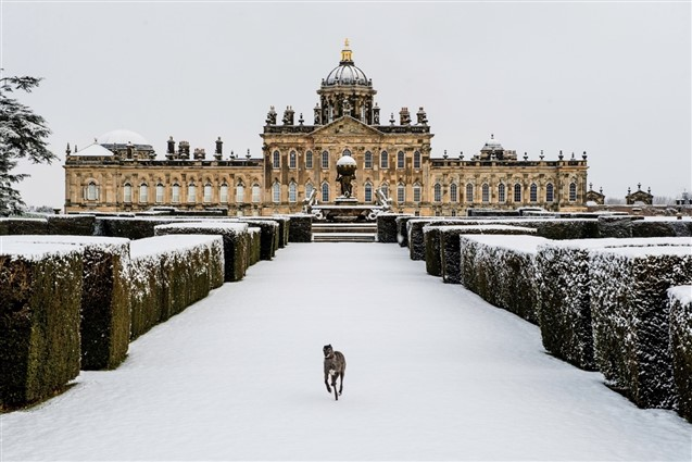 External view of Castle Howard in the Snow with a lurcher in the foreground