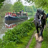 Horse Drawn Boat Trip on the Kennet & Avon Canal