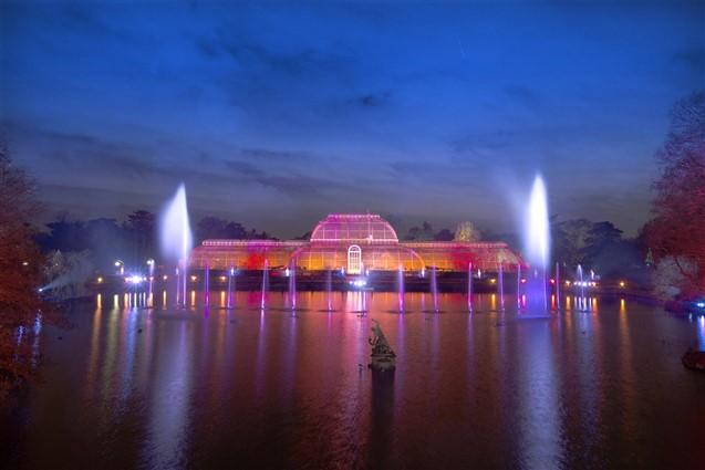 Christmas illuminations at Kew