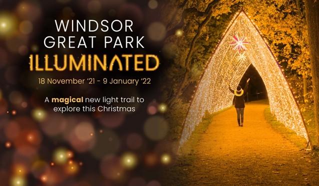 Windsor Great Park Illuminated
